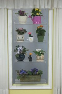 Hanging Window Plant Stand