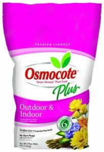 Osmocote is a great time-release fertilizer that I use on all my houseplants.