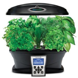 The AeroGarden makes indoor herb gardening easy.